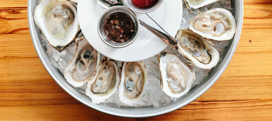 oysters-900x400